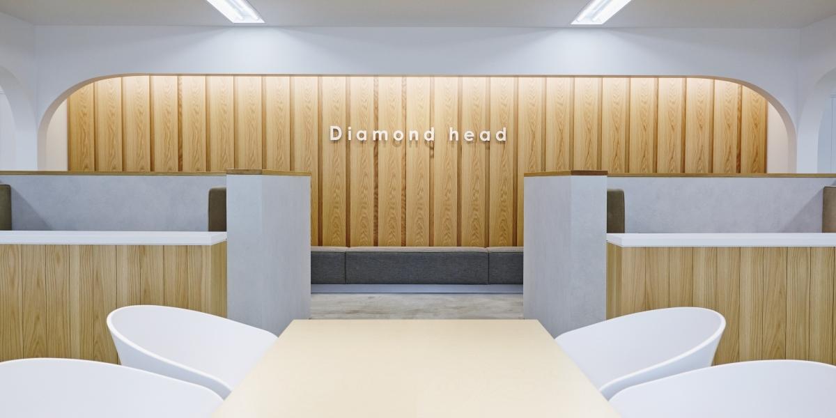 detail_diamondhead_img01.jpg